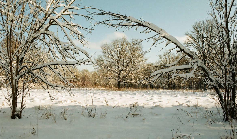 Зимний пейзаж с пересветом